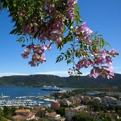 port-of-Porto-Vecchio-Corsica-france